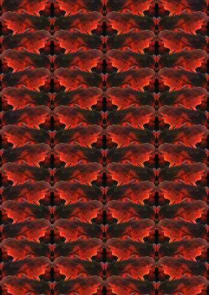 Red butterfly Pattern