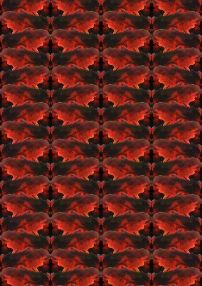 Red butterfly Pattern