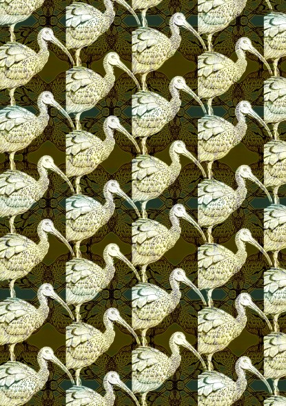 Ibis pattern 3 linear dodge